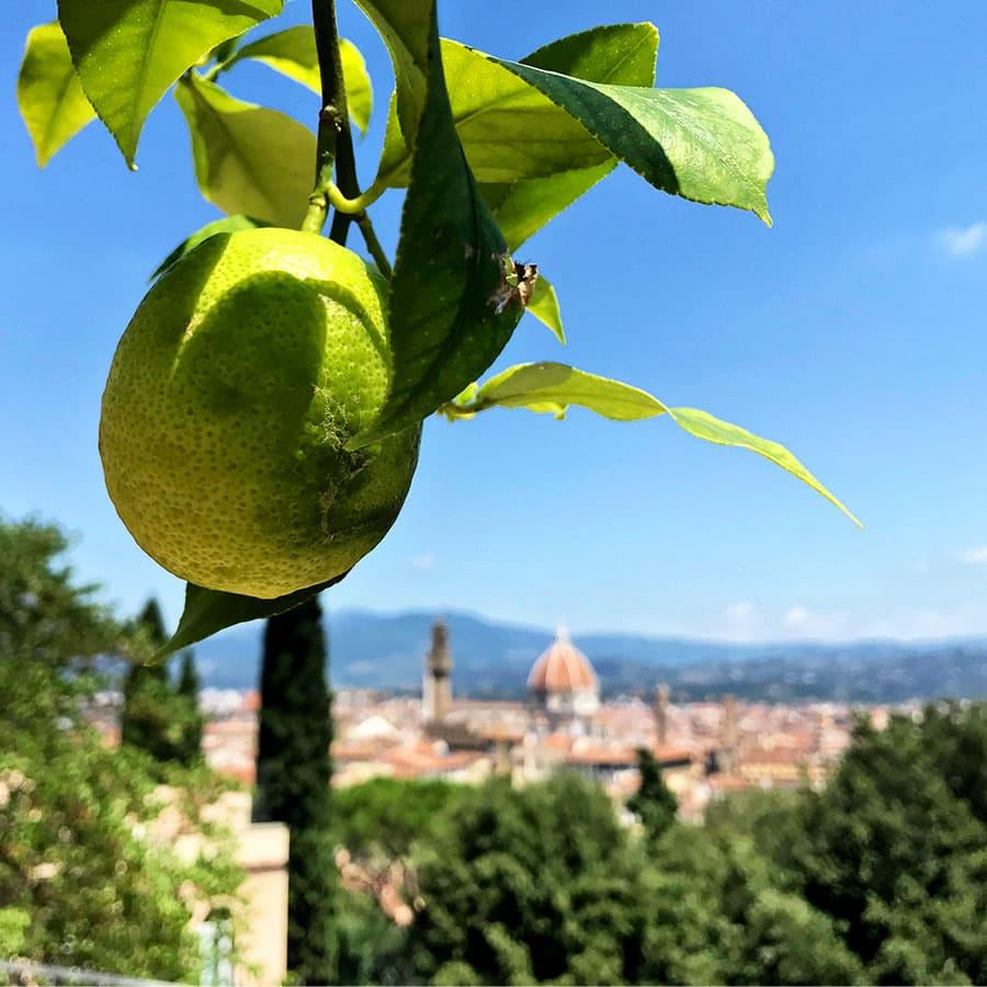 Living in Florence, Italy :: Giardino Bardini