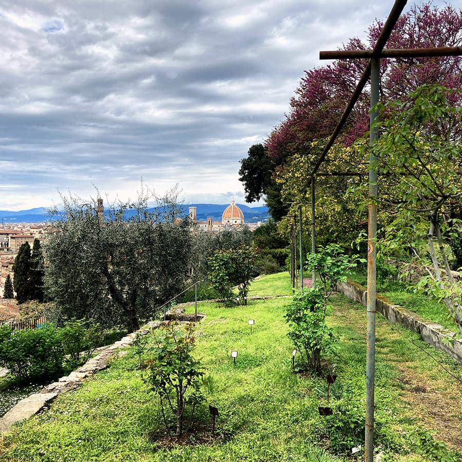 Living in Florence, Italy :: Giardino delle Rose