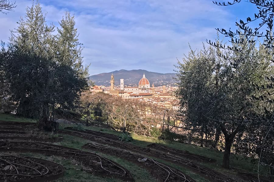 Living in Florence - Delighting in Florence�s vivacity