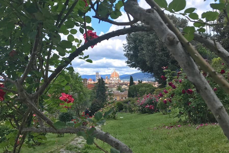 Living in Florence - Filling up my heart with beauty