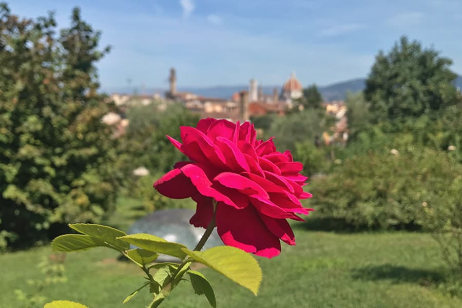 Living in Florence - Time to nurture Florence
