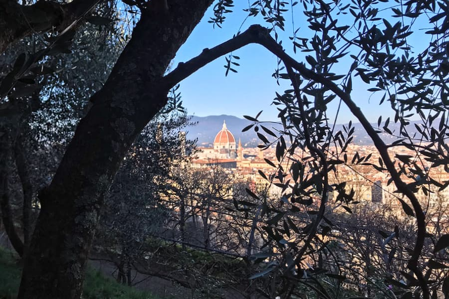 Living in Florence - Basking in the winter energy