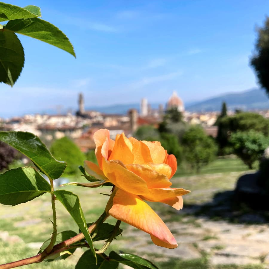 Living in Florence :: Frolicking around Florence
